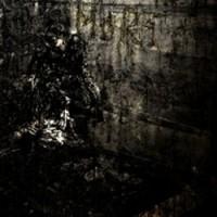 Blut_Aus_Nord_-_MORT
