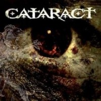 cataract2008