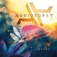 oshy_12122015_Audiotop